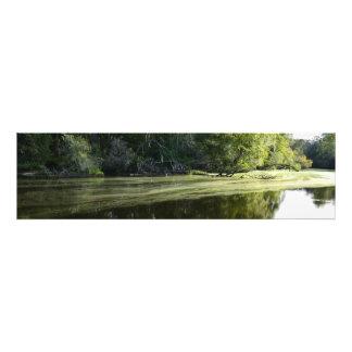 Impression Photo La rivière Green