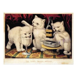 Impression Photo Les trois minous avides au festin Ives