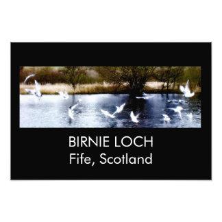 Impression Photo Loch de Birnie