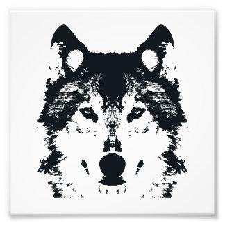 Impression Photo Loup noir d'illustration