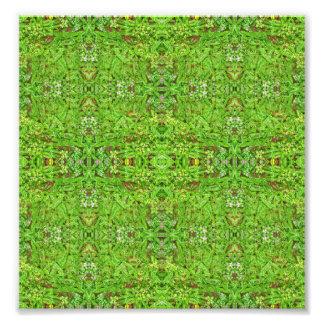 Impression Photo Motif de collage de nature de Digitals