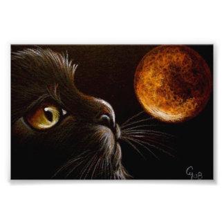 IMPRESSION PHOTO NUIT ORANGE DE HALLOWEEN DE LUNE DE PROFIL DE CAT