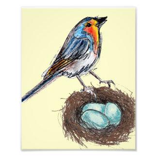 Impression Photo Oiseau 8x10 de Robin d'art d'impression de nid des