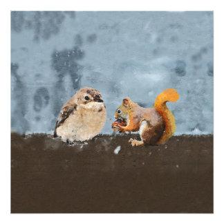 Impression Photo Oiseau et écureuil