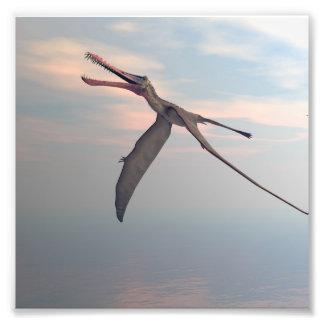 Impression Photo Oiseau préhistorique d'Anhanguera