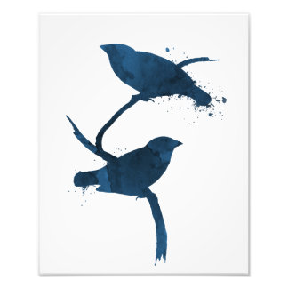 Impression Photo Oiseaux