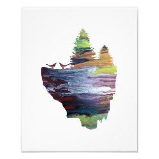Impression Photo Oiseaux sur une île de flottement