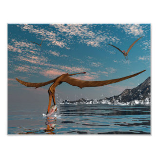 Impression Photo Pêche préhistorique d'oiseau d'Anhanguera