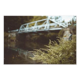 Impression Photo Pêche sous le pont