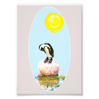 Impression Photo Pingouin faisant une sieste au soleil