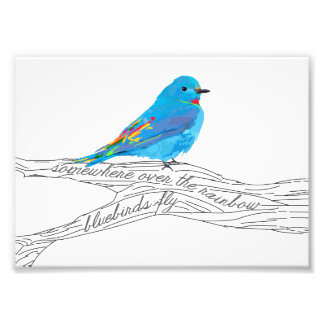 Impression Photo Quelque part au-dessus de la copie d'oiseau bleu