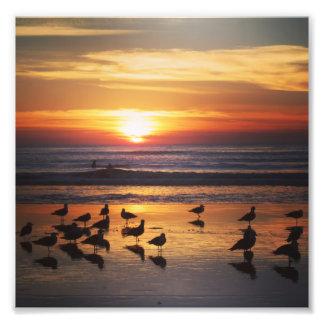 Impression Photo Surfer au coucher du soleil