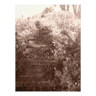 Impression Photo vieilles étapes de jardin