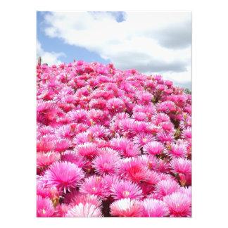 Impression Photo vieilles fleurs de jardin