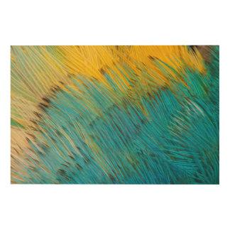 Impression Sur Bois Abrégé sur plume de perroquet d'Amazone