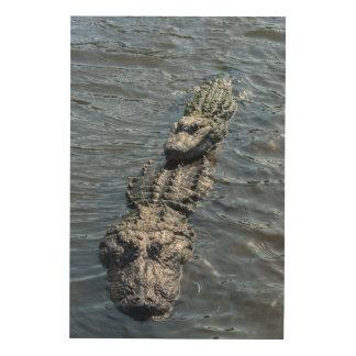Impression Sur Bois Alligators se reposant en eau peu profonde