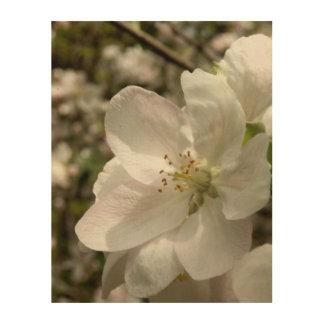 Impression Sur Bois Apple fleurissent l'art en bois de mur
