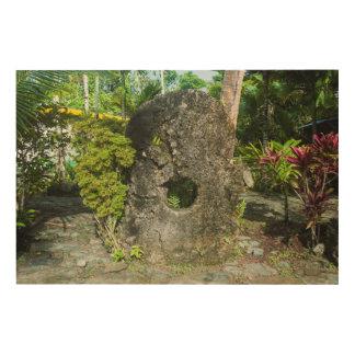 Impression Sur Bois Argent en pierre dans la jungle