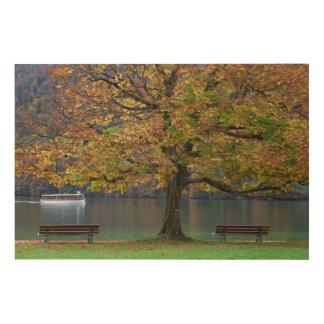 Impression Sur Bois Bateau sur un lac dans la chute, Allemagne
