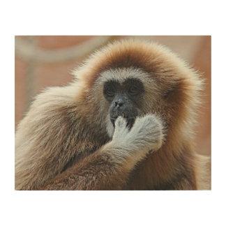 Impression Sur Bois Blanc-remettre-gibbon