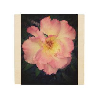 Impression Sur Bois Bois rose de fleur de l'Arizona
