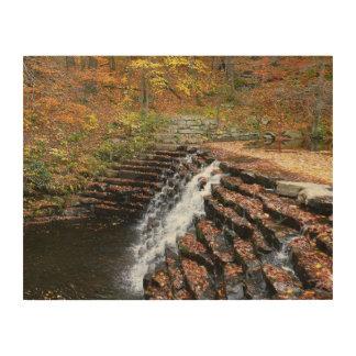 Impression Sur Bois Cascade au parc d'état de colline de laurier II