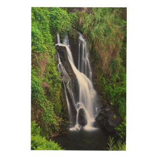 Impression Sur Bois Cascade, côte de Hamakua, Hawaï