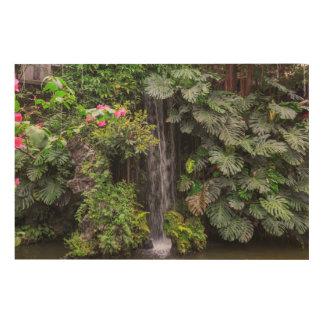 Impression Sur Bois Cascade de jardin luxuriant, Chine