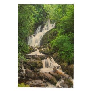 Impression Sur Bois Cascade de Torc pittoresque, Irlande