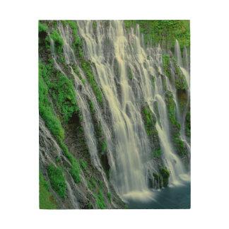 Impression Sur Bois Cascade pittoresque, la Californie