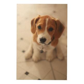 Impression Sur Bois Chiot 2 de beagle