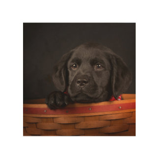 Impression Sur Bois Chiot noir de labrador retriever dans un panier