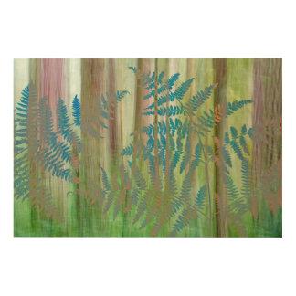 Impression Sur Bois Collage des fougères et de la forêt | Seabeck, WA