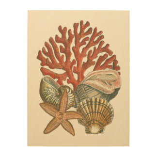 Impression Sur Bois Collection de vie marine