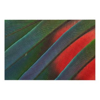 Impression Sur Bois Conception dirigée bleue de plume de perroquet