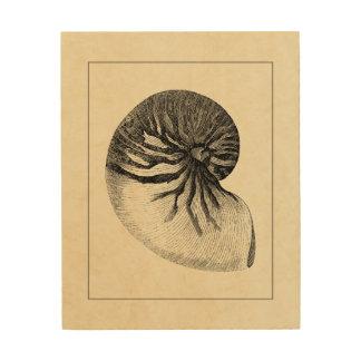 Impression Sur Bois Conque noire et blanche vintage Shell