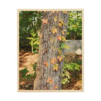 Impression Sur Bois Copie en bois de feuille rustique d'automne