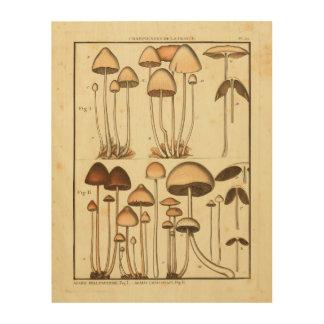 Impression Sur Bois Copie française d'art de casquette de Brown de