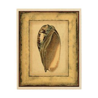 Impression Sur Bois Coquillage vintage rustique