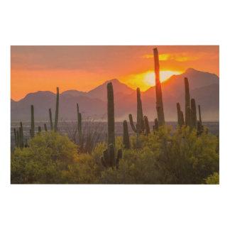 Impression Sur Bois Coucher du soleil de cactus de désert, Arizona