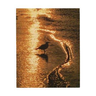 Impression Sur Bois Coucher du soleil d'or - lac George