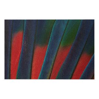 Impression Sur Bois Détail Bleu-Dirigé de plume de perroquet