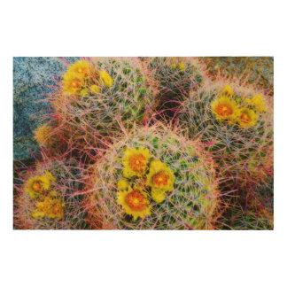 Impression Sur Bois Fin de cactus de baril, la Californie