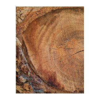 Impression Sur Bois Fin de tronc d'arbre
