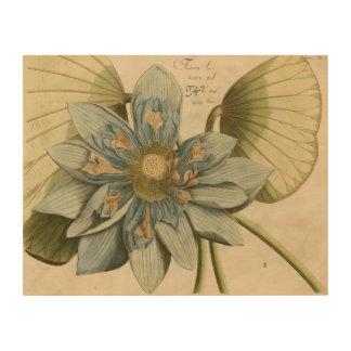Impression Sur Bois Fleur de Lotus bleu sur l'arrière - plan bronzage