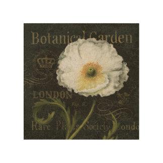 Impression Sur Bois Fleur de pavot cultivé
