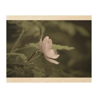 Impression Sur Bois flowerblossom pourpre aged8