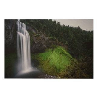 Impression Sur Bois Forêt de cascade