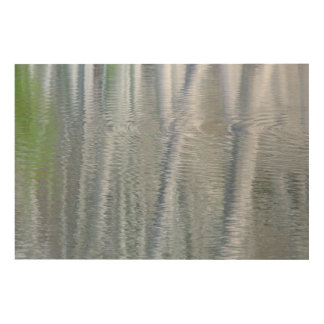 Impression Sur Bois Île des arbres d'aulne | Bainbridge, WA
