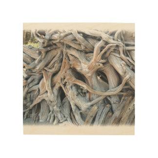 Impression Sur Bois Image inextricable de racine d'arbre imprimée sur